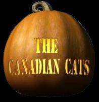 jack_o_lantern_canadiancats