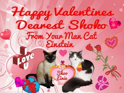 00-valentine-card-shoo-einstein