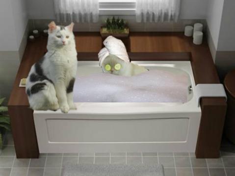 ckkbath