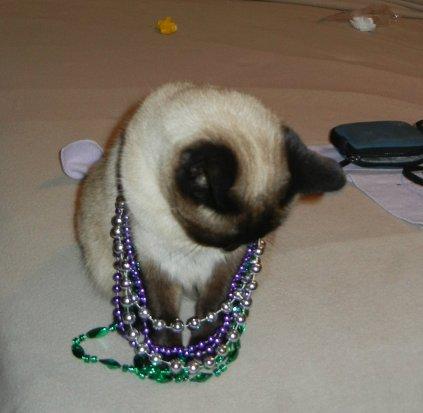 shoko-with-mardi-gras-beads
